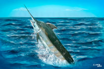 Sailfish von Christian Lopez