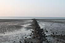 Zwischen Watt und Festland von mariso