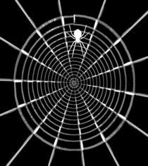 Netz-Kunst  von claudja
