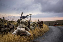 Abandoned Teddy Bear by Michael Robbins