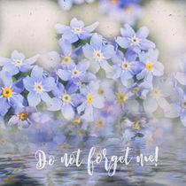 Vergiss mein nicht! by Chris Berger
