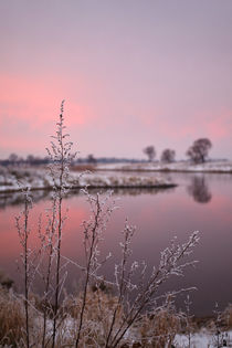 Winter Sunset At River Bank von STEFARO .