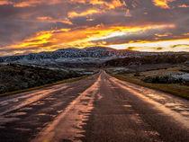 Road into the Sun von Marco Bittel