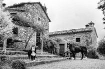 hospitality by Gianni Brunacci