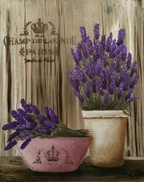 Lavendel by Christine Schmidt