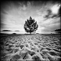 Alone on the beach von Hasse Linden