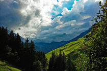 Zillertal - Grüne Matten am Berg von Hartmut Binder