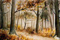 'autumn forest - Herbstwald' by Chris Berger