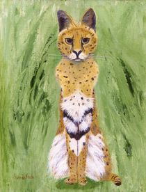 Serval Cat by Jamie Frier
