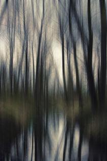 'Wenn es Abend wird in der Au......' von Chris Berger