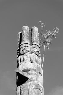 Haida Totem Pole by John Mitchell