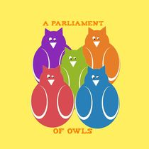 A Parliament of owls by Yolande Anderson