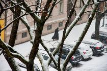 walking through snowy streets in Berlin by Jessy Libik
