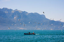 Fisherman boat surrounded by seagulls floating on the Geneva Lake by Jessy Libik