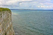 Bempton Cliffs by gscheffbuch