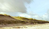 Ostseestrand von Ingrid Clement-Grimmer