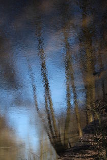 Wasserspiegelung in der Neetze by Simone Marsig