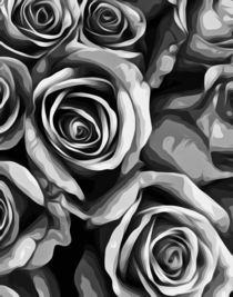 drawing and painting roses texture in black and white von timla