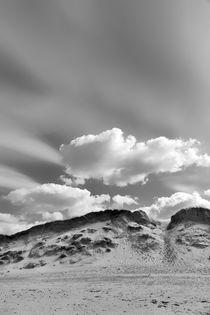 Nordsee Düne by kiwar