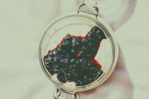 Jar Of No Bake Cheesecake With Blueberry Jam by Radu Bercan