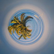 Little Planet lonely sailing boat - Kleiner Planet mit Segelboot by Silvia Eder