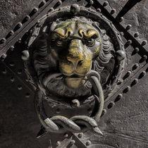 Löwenkopf und Türklopfer von ullrichg