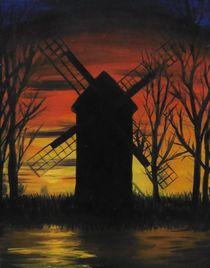 Bockwindmühle Bad Düben von Barbara Kaiser