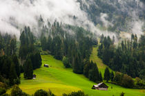 Swiss huts, on the foggy hillside between fields and forests by Jessy Libik