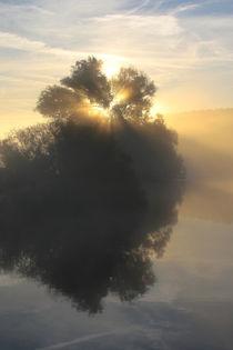 Sonnenlicht und Nebel von Bernhard Kaiser