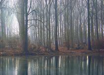 Nebelsee von Regina Raaf