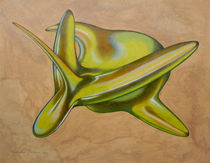 green aerofish von federico cortese