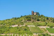Burg Nollig bei Lorch 4 by Erhard Hess