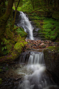 Blaen y Glyn Waterfall by Leighton Collins