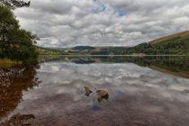 Pontsticill reservoir von Leighton Collins
