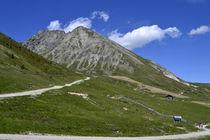Wanderweg Meran 2000 by rickeybauer