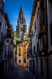 Toledo Cathedral von David Pringle