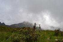 Wetterumschwung by rickeybauer