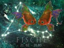Sternzeichen - Fische von Chris Berger
