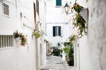 alley in white city Ostuni, Apulia, Italy von tanialerro
