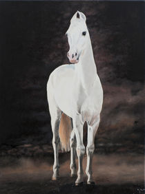 horse by kararzyna kot