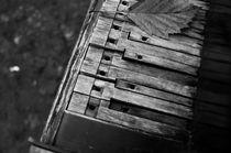 Autumn Piano Keys von cinema4design