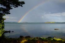 Under the rainbow von Thomas Matzl