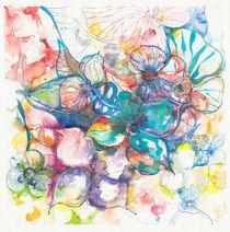 flores galaxia by aerostato