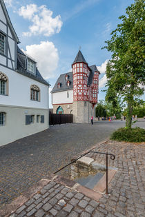 Haupteingang Bischofssitz Limburg 86 by Erhard Hess
