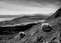 Isle of Skye by Hasse Linden