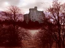 Castle Mountain by Paul Barker