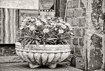 Nostalgischer Blumentopf by kiwar