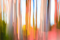 Abstract Moving Trees Background Strawberry Pink and Frost von Eugene Norris