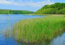 Jabelscher See von gscheffbuch