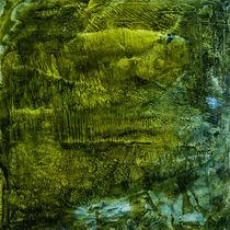 bird's-eye view - the waterfall von Chris Berger